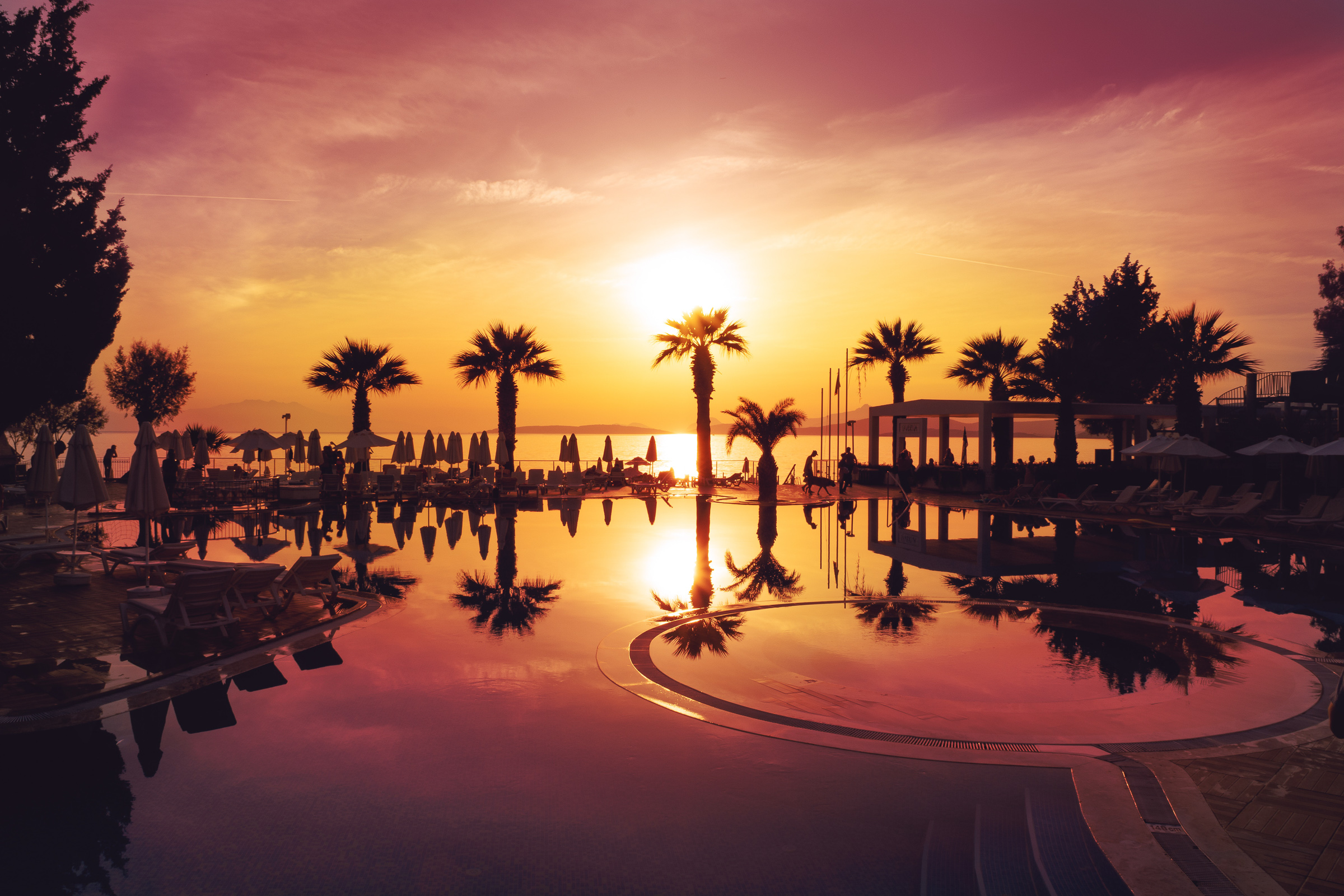 Beautiful sunset silhouetting palm trees over infinity pool at resort